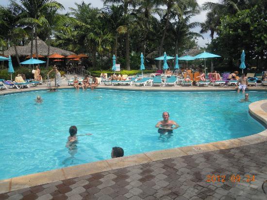 Hotel Riu Plaza Miami Beach : Linda piscina