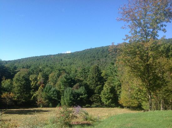 Woodstock Country Inn: Beautiful view of the Catskills...
