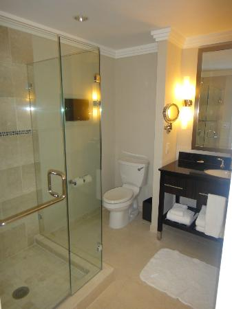 Loews Atlanta Hotel: Bathroom with separate shower