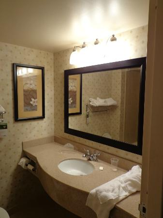Wingate by Wyndham St. Charles: Bathroom
