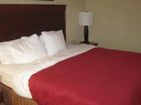 Country Inn & Suites By Carlson, Fredericksburg: Comfy bed