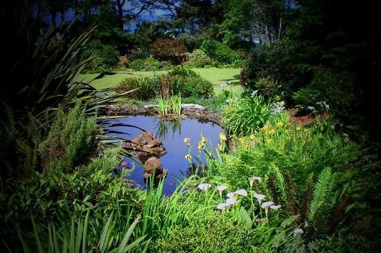Ambrosia Gardens Bed & Breakfast: Summer Bloom