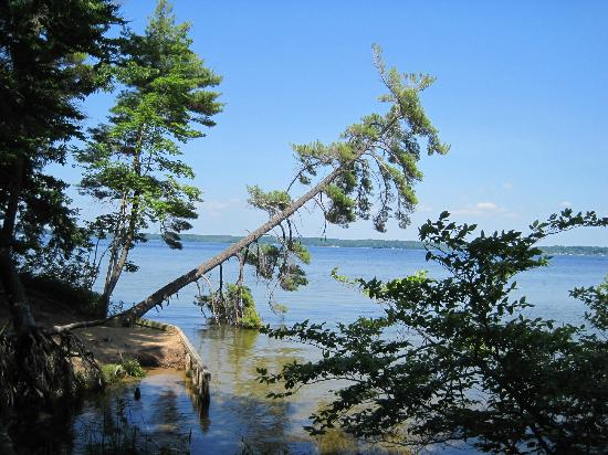 Lost Lake Trail, Ludington State Park