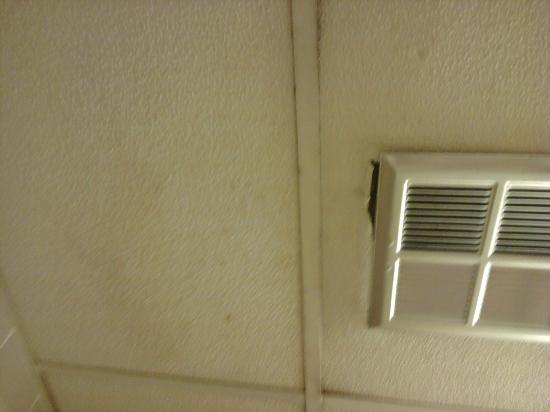 Travelodge Toronto East: ceiling in bathroom