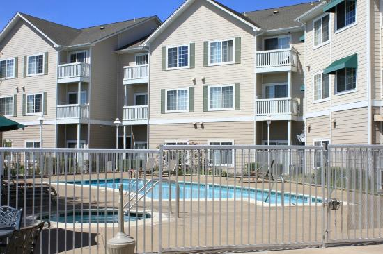 Homewood Suites by Hilton Oakland-Waterfront: Pool area