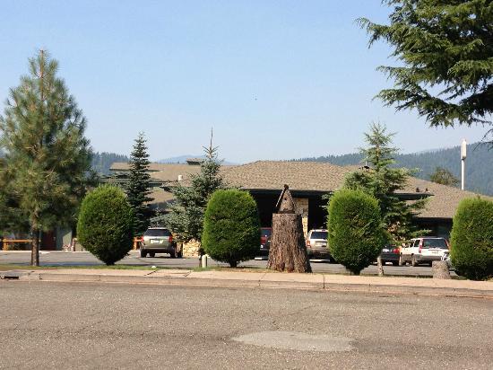 BEST WESTERN PLUS Tree House: The hotel