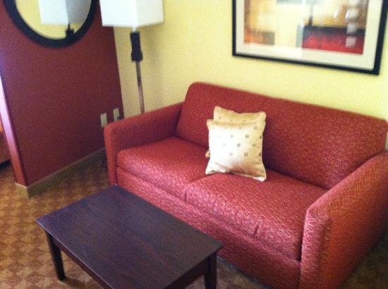 Comfort Suites Suffolk-Chesapeake: Couch