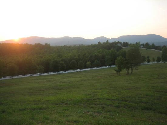 The Red Horse Inn: Sunset over the grounds, cabins in the distance