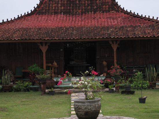 Amore Cafe: View Garden Flower area Teras Depan