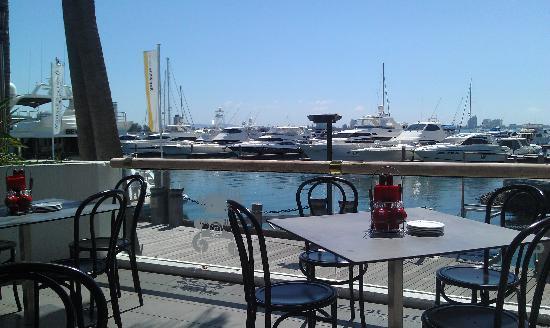 Ribs and Rumps Marina Mirage: beautiful view