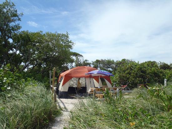 Campsite Ocean Front Picture Of Bahia Honda State Park