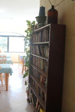 San Antonio Guesthouse: Library!