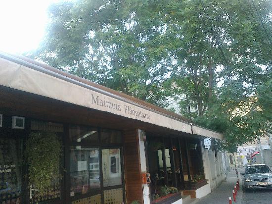 City Plaza Hotel: Funny name restaurant nerby