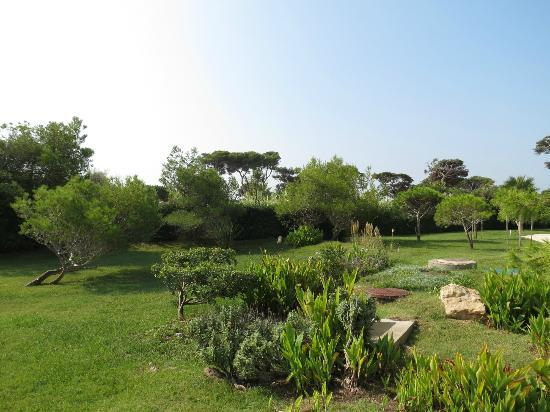 Ibis Hyeres Plage Thalassa : jardins de l'hôtel