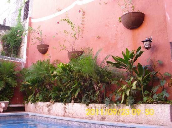 Hotel Reforma: alberca