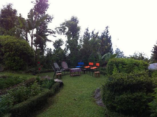 Samthar Farm House: well maintained lawns