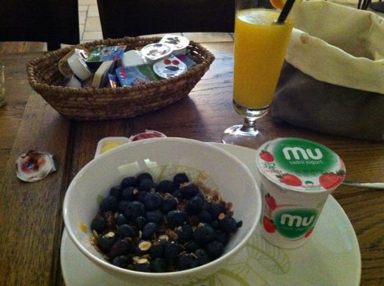 Mansion Dvor Tacen: individail, fresh breakfst