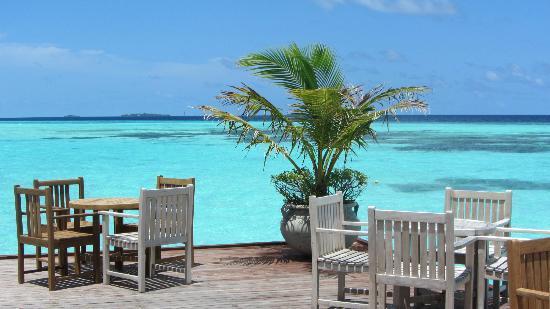 Olhuveli Beach Spa Maldives Vue Du Bar