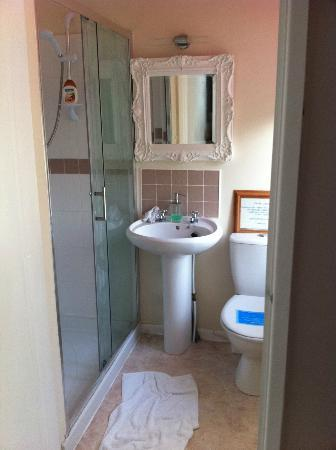 The Fairhaven Bed and Breakfast: Bathroom with good shower