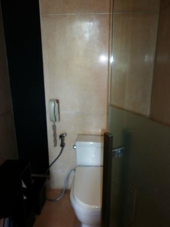 Anantara Seminyak Bali Resort: Toilet