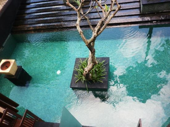 Anantara Seminyak Bali Resort: Pool at front of Pool Access Suites