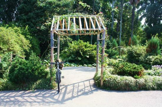 Batumi Botanical Gardens: Botanical Garden