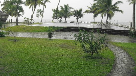 The World Backwaters: Raining morning...