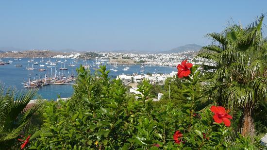 Hotel Manastir: Zi 307 - Aussicht von unserem Balkon