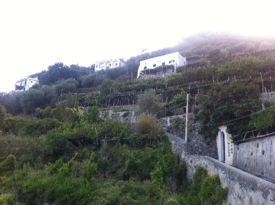 Villa Rina Country House Amalfi: View from the path up to Rina's