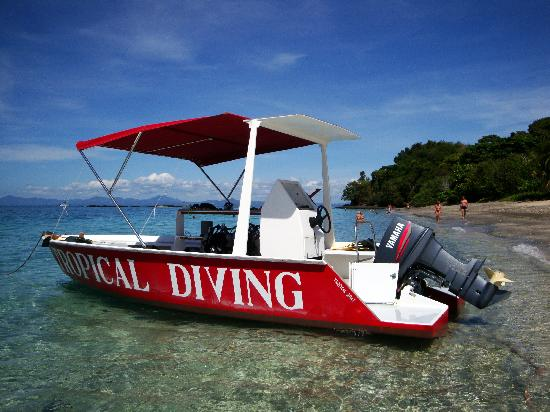 Vedette Tropical Diving