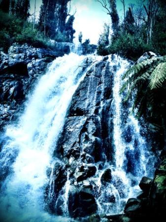 Steavensons Falls: Steavenson's Falls