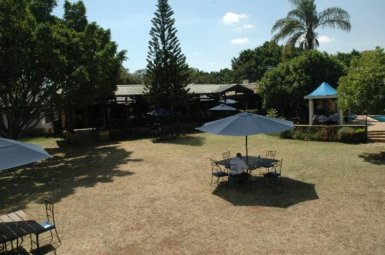 Aero Club of East Africa Restaurant: Small section of the rear garden area