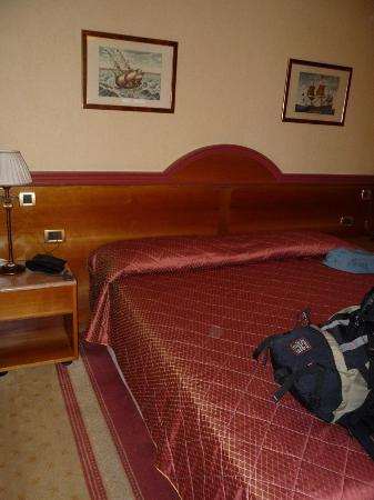 Zanhotel Regina : room