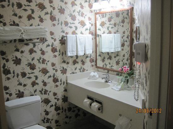 The Van Buren Hotel at Shipshewana: Bathroom