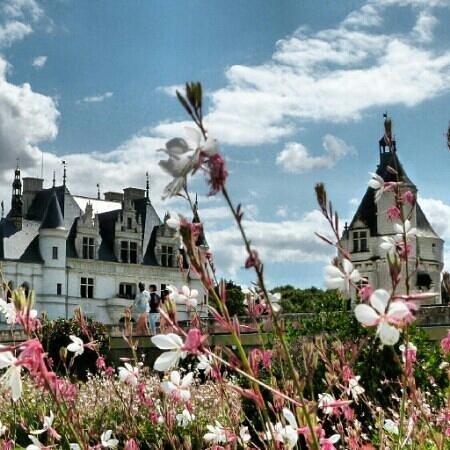 Château de Chenonceau : chateau de chenonceau