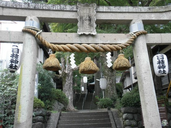 Hie Shrine: 鳥居