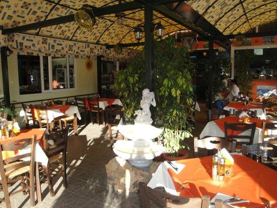 Dama Dama Taverna: A traditional greek taverna