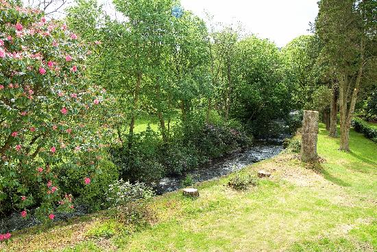 Stanley House: The Stream running through the garden