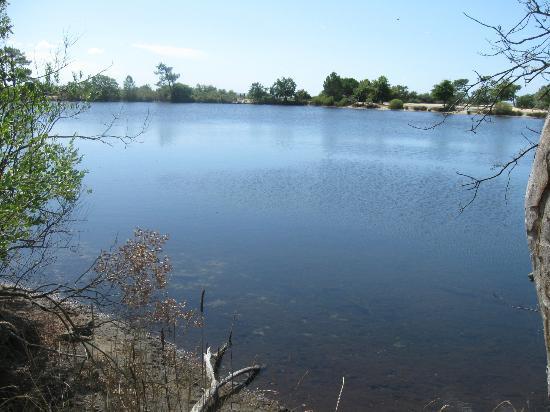 Ares, ฝรั่งเศส: Petit lac d'Arès où on peut se baigner