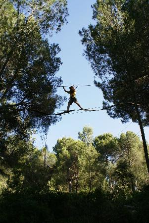 Jungle Parc (Santa Ponsa, Spain): Why go? - TripAdvisor