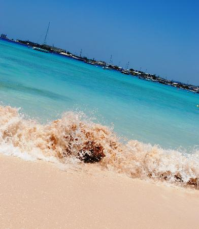 Island Inn Hotel: Beach - one minute walk from Inn