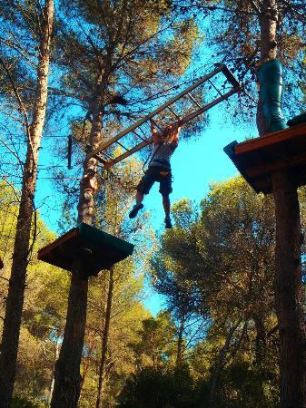 Jungle Parc: Recorrido Extremo