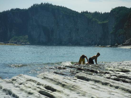 Camping Des-Rosiers : La baignade