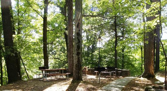 Glen Iris Inn: Pinewood Lodge picnic and barbeque area