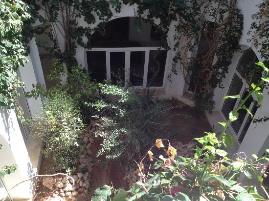 Club Jumbo Djerba: Hotel garden