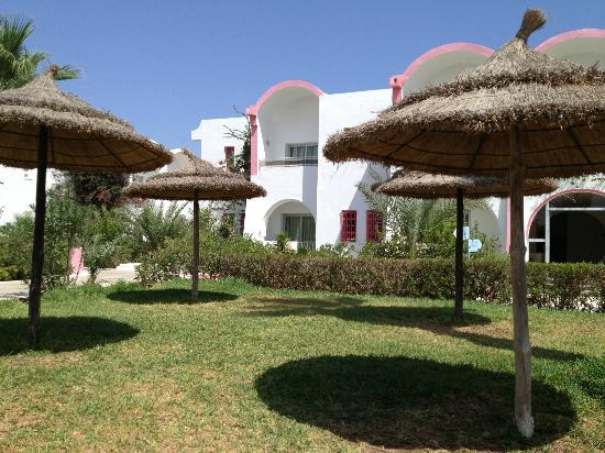 Club Jumbo Djerba: Pool garden