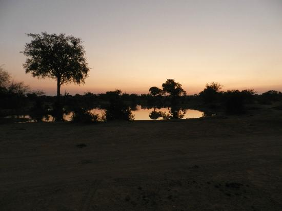 ‪‪Tanda Tula Safari Camp‬: Dusk at a watering hole