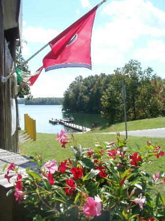 Lakeview Boat Doc & Ice Cream Shoppe: Beautiful scene, flowers and TN flag