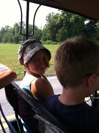 "كلاريون إن ستراسبورغ - لانكاستر: Recreation: Amish buggy rides - very fun! Many to choose from, we went to ""Ed's"" . 5 stars "