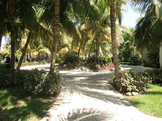 El Dorado Royale, a Spa Resort by Karisma: Manicured walk-ways